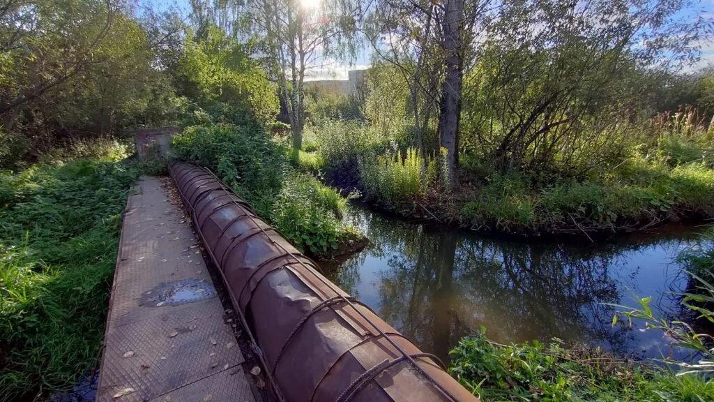 Экологическая тропа «Ивинская»