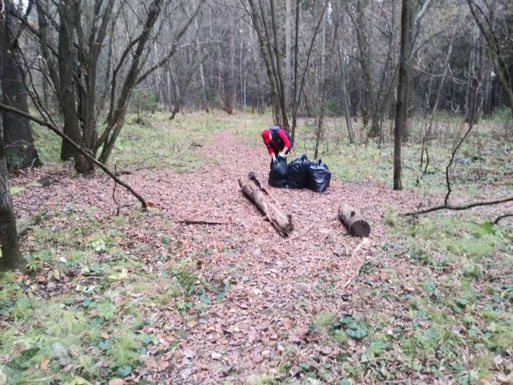 В Черняевском лесу оперативно убрали мусор