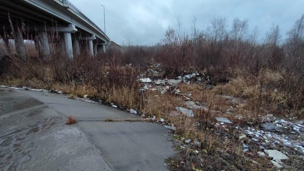 Десять несанкционированных свалок обнаружено у Красавинского моста